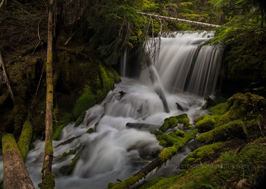 In Search of Honeybucket Falls
