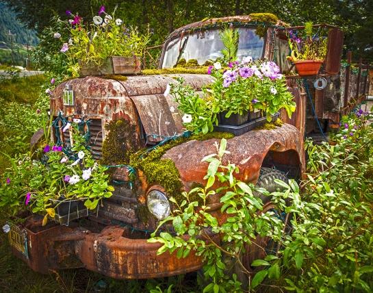 Success at Art in the Garden 2013