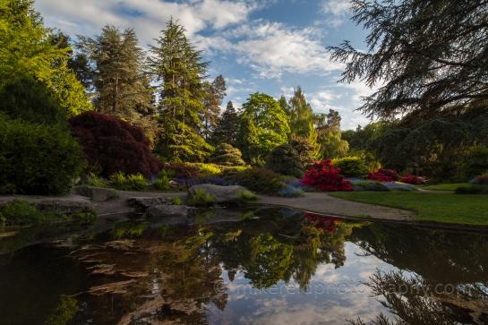 Tom Kubota's Garden Vision
