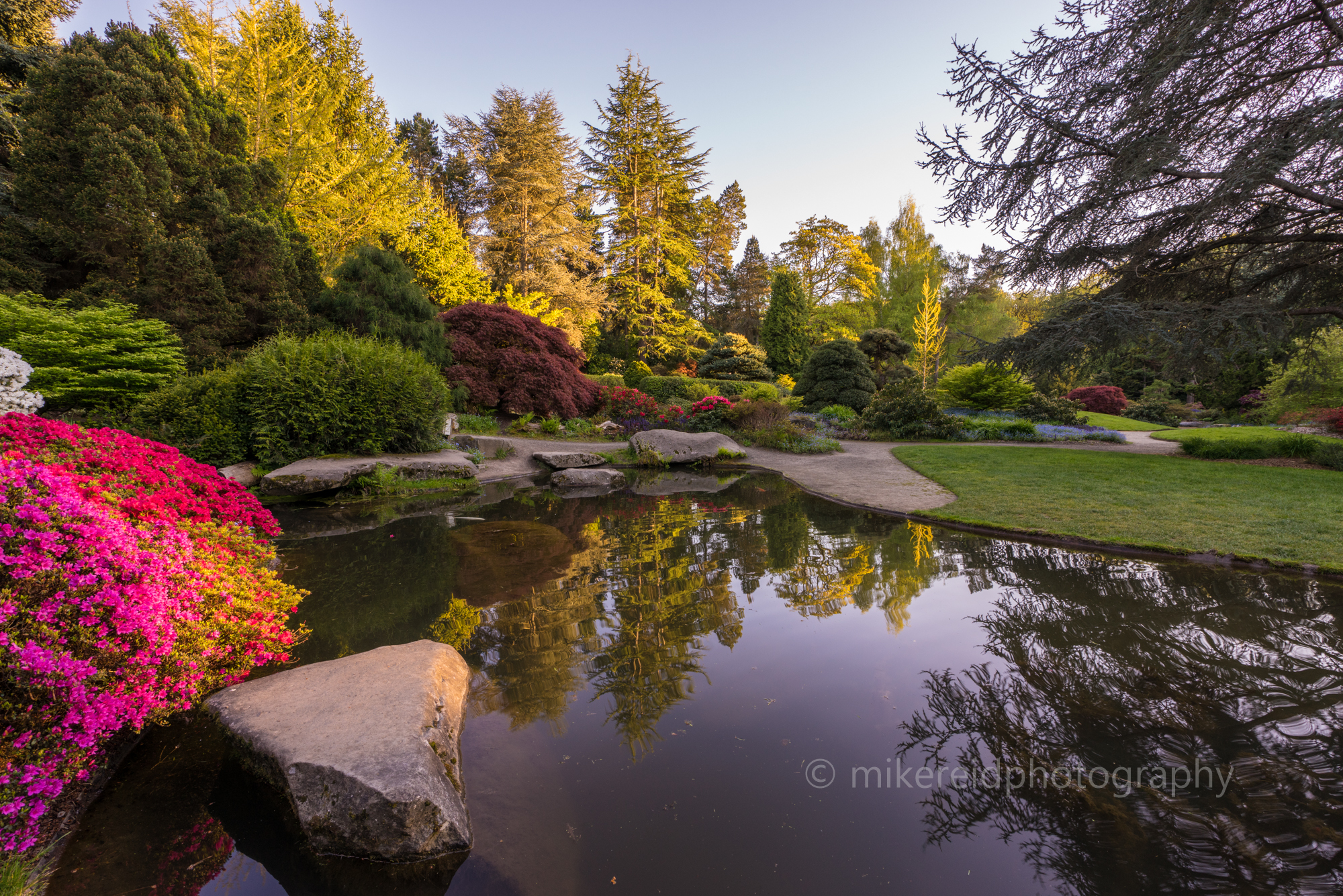 japanese garden | Flower, Botanical and Landscape Sony Mirrorless ...