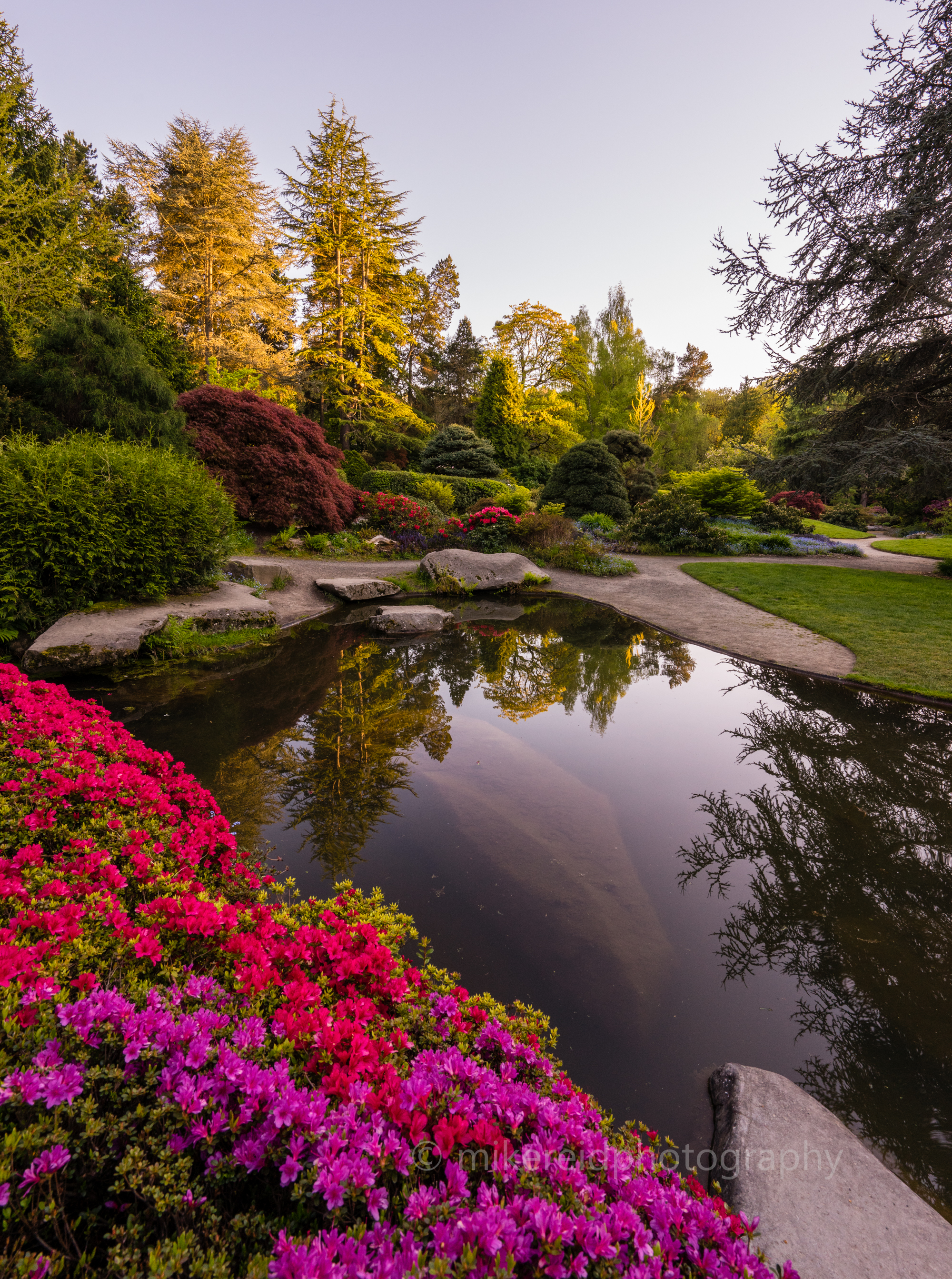 japanese garden | Flower, Botanical and Landscape Sony Mirrorless ...