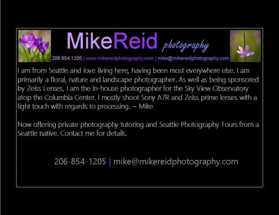 mike reid photography artists statement