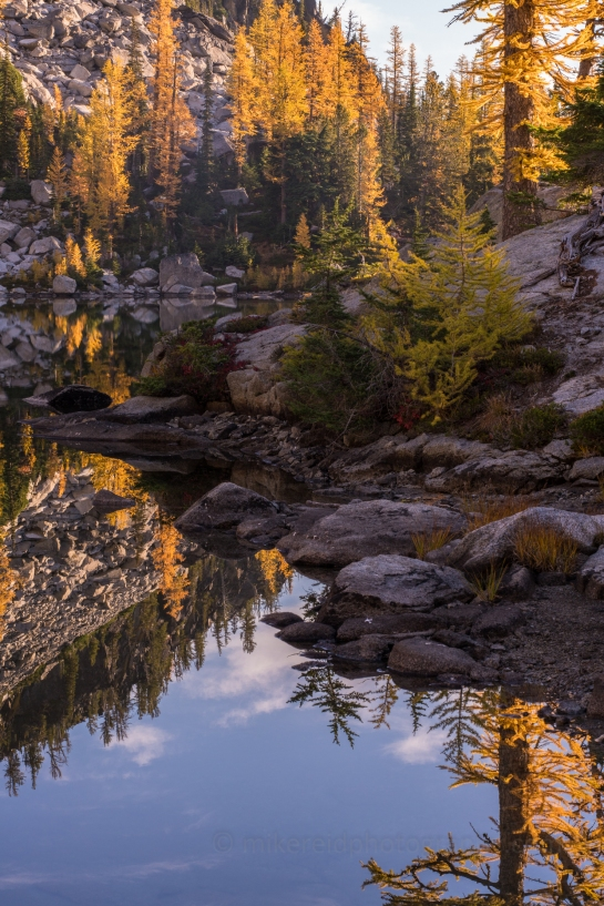 zeiss otus larches fall colors enchantments northwest landscape