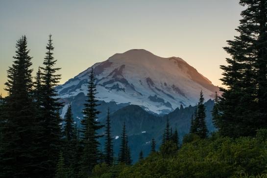 Mount Rainier Naches Loop Wildflowers and Rainier