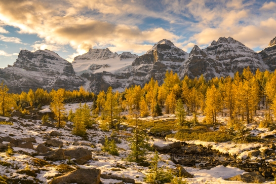 Fall Colors Wonderland in Larch Valley Lake Moraine Banff