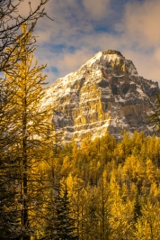 Mount Tuzo in a Fall Colors Wonderland