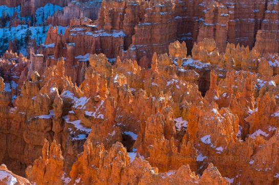 Bryce Canyon Sunrise Light Closeup