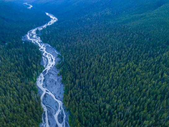 Aerial Photography Drone Rainier White River