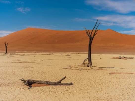 Deadvlei Lost Forest in Namibia