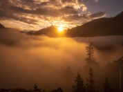 Diablo Lake Fog and Trees Sunset Fuji GFX50s and GF23mm Lens