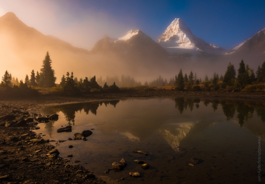 Mount Assiniboine in the Mist Golden Light
